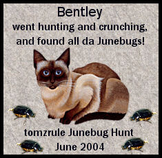 bentley_junebugaward.jpg